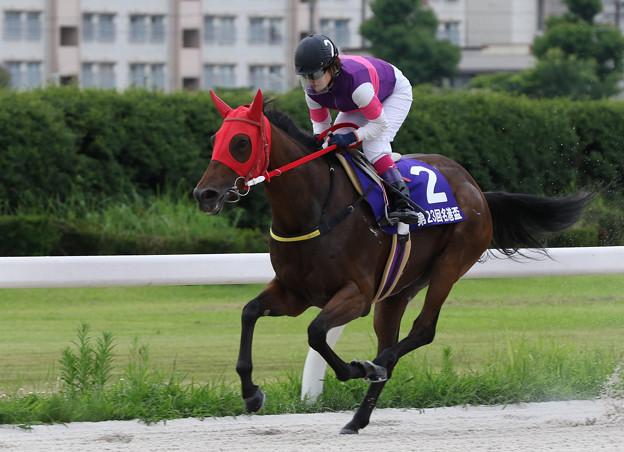ポルタディソーニ  レース_1(19/07/15・スポーツニッポン賞 第23回  名港盃)