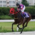 Photos: ポルタディソーニ  レース_1(19/07/15・スポーツニッポン賞 第23回  名港盃)