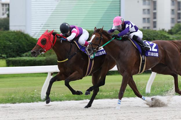 ポルタディソーニ レース_2(19/07/15・スポーツニッポン賞 第23回  名港盃)