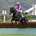 Photos: メイショウダッサイ レース(19/07/27・第21回 小倉サマージャンプ)