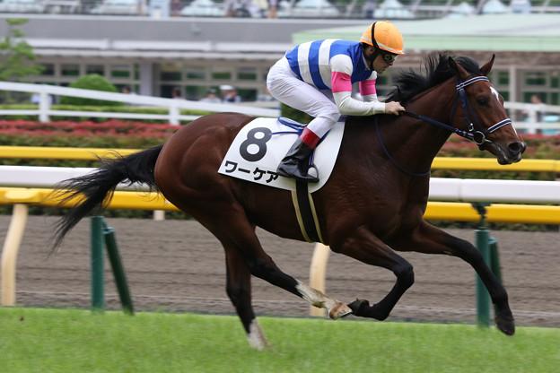 ワーケア レース(19/06/09・新馬戦)