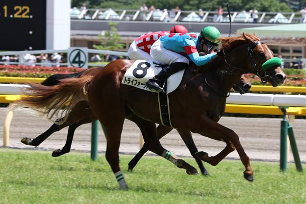 トライフォーリアル レース(19/06/16・新馬戦)
