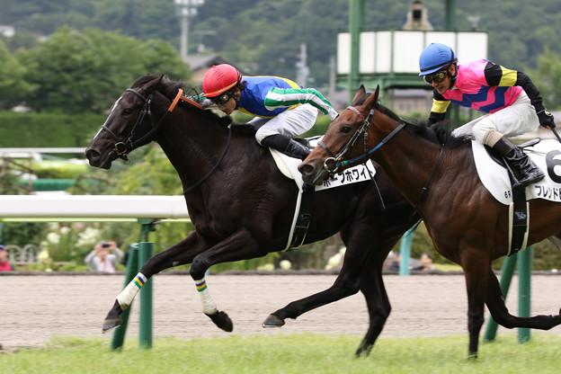 ホープホワイト レース(19/07/07・福島競馬場)
