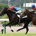 Photos: ホープホワイト レース(19/07/07・福島競馬場)