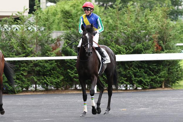 ホープホワイト レース後(19/07/07・福島競馬場)