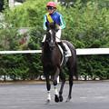 Photos: ホープホワイト レース後(19/07/07・福島競馬場)