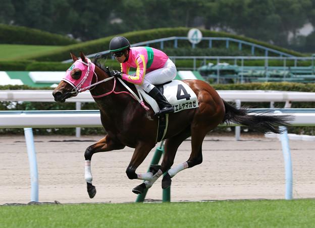 テイエムヤマカゼ レース(19/07/27・新馬戦)