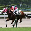 Photos: テイエムヤマカゼ レース(19/07/27・新馬戦)