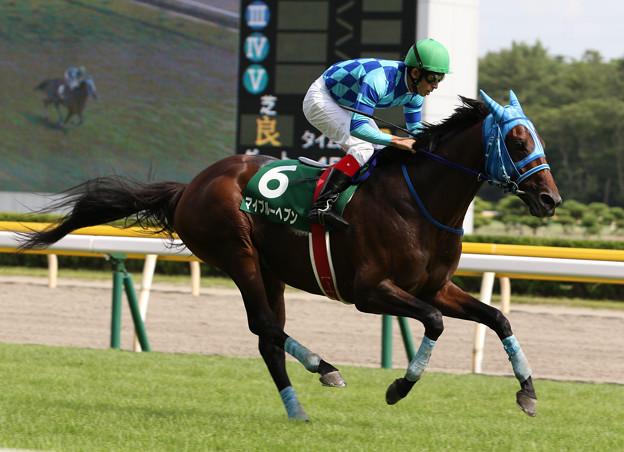 マイブルーヘブン レース(19/08/24・第21回 新潟ジャンプステークス)