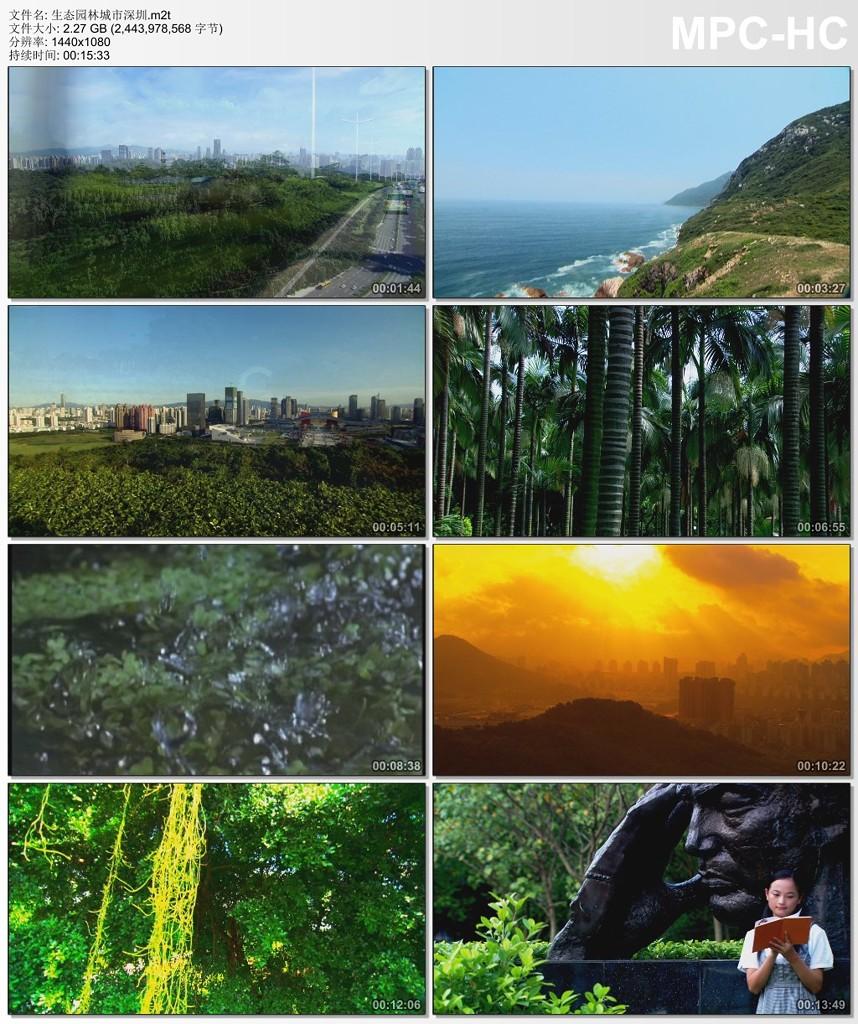生态园林城市深圳视频素材
