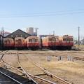 Photos: 五井機関区 小湊鉄道