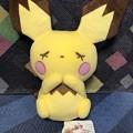Photos: POKEMON LOVE ITS'DEMO ぬいぐるみ ピチュー