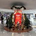 写真: クリスマスツリー イオン マリンピア店