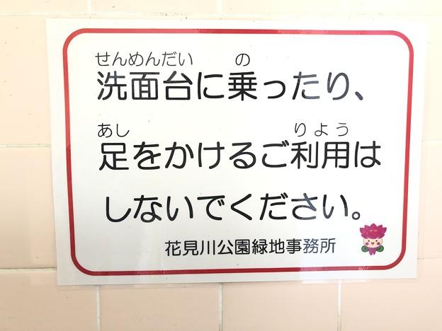 ちはなちゃん 洗面台に乗ったり、足をかけるご利用はしないでください。 花島公園