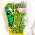 Photos: ナラシド♪ 習志野産サラダわさび菜