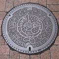Photos: s1115_三田市マンホール