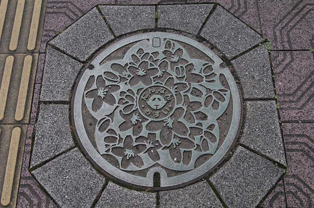s1241_旧丹南町マンホール_篠山口駅前