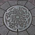Photos: s1241_旧丹南町マンホール_篠山口駅前