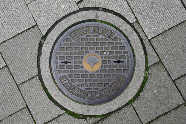 s9976_東京都建設局マンホール_公共基準点_東京都新宿区