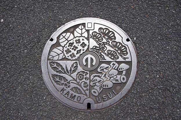 s2199_木津川市旧加茂町マンホール_USUI