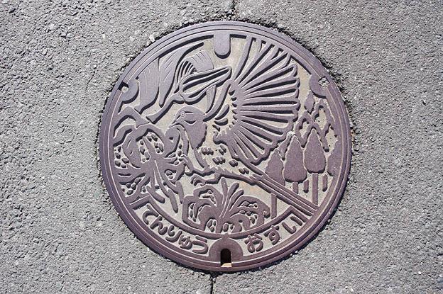 s7872_浜松市旧天竜市マンホール_おすい