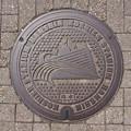 s9586_阪神甲子園球場マンホール_雨水