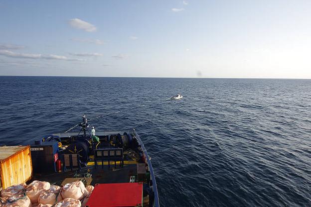 s1255_南大東島亀崎港で海上ブイにロープを固定する作業船