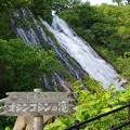 Photos: s4246_オシンコシンの滝
