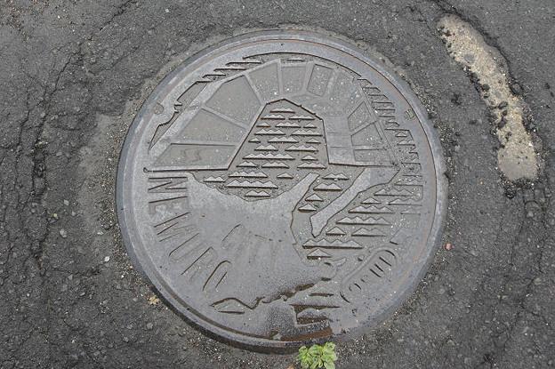 Photos: s4784_根室市マンホール_四島の架け橋柄_OSUI