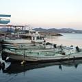 Photos: 港。