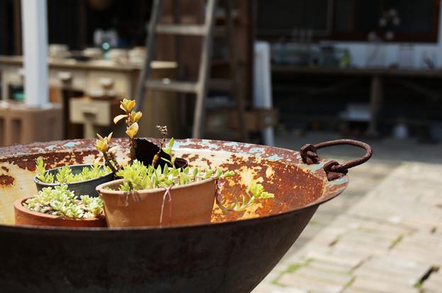 鉄鍋鉢カバー