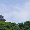 Photos: 見下ろす山城