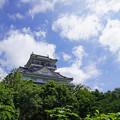 金華山の城
