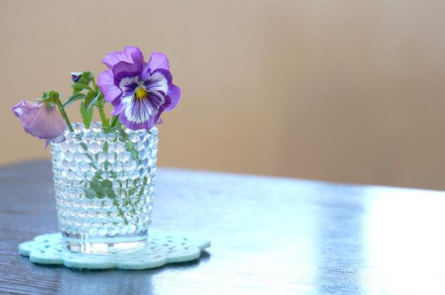 座卓の上の花