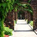 写真: 花園の入口