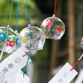 Photos: 風にスウィング