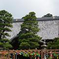 Photos: 寺と風鈴