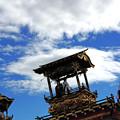 写真: 空を仰いで