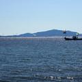 Photos: 海と舟