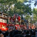 Photos: 祭り見物