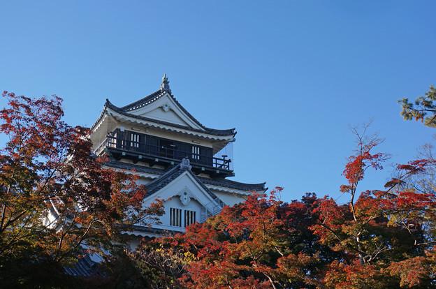 岡崎城の秋