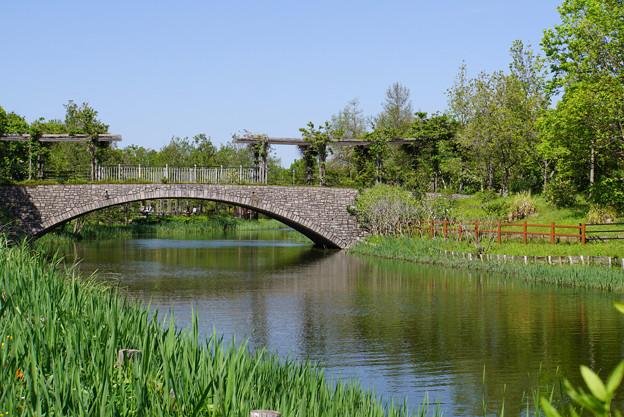 新緑を渡る橋