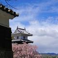 Photos: 城下町を見下ろして