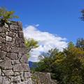 城跡を眺め