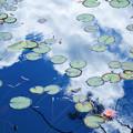 Photos: 水色の空
