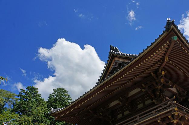 護国之寺楼門