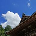 Photos: 護国之寺楼門