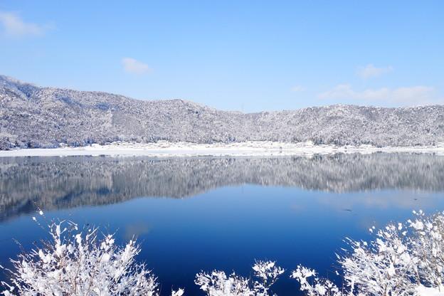 余呉湖の冬