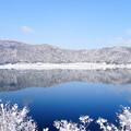 写真: 余呉湖の冬