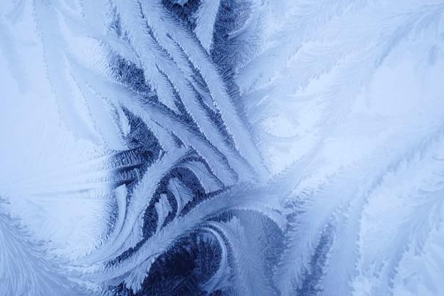 霜の華(原型)